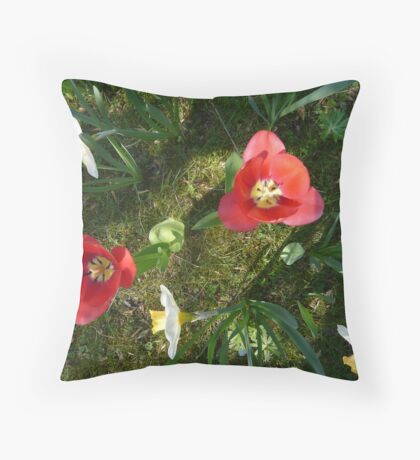 Spring Flowers by Dawn Throw Pillow