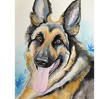 Max the GSD Photographic Print