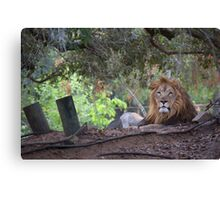 Ruler of all he Surveys Canvas Print