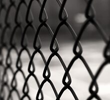 Fence by omerunlu