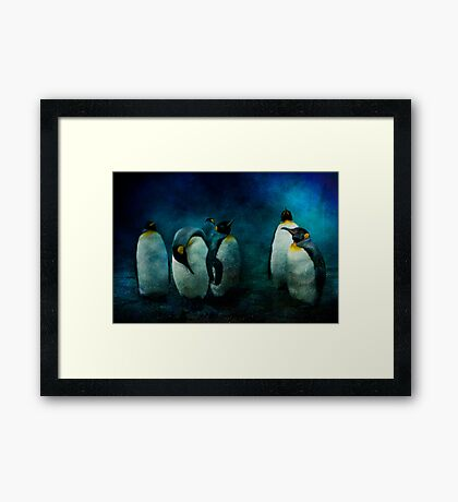 Cold Penguins Framed Print
