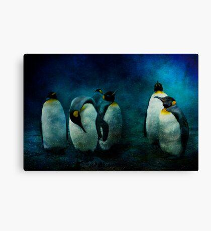 Cold Penguins Canvas Print