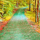 Walk In Colors by Anetka
