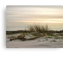 Evening on the Beach Canvas Print