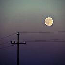 Night watch by Marina Herceg