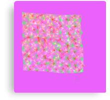 Color Net Canvas Print