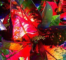 Lovely, Colourful, Melange of Leaves by Angela Gannicott