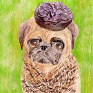 Pug in Funny Hat by RagAragno