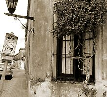 A corner in Colonia by Paige