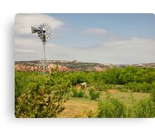 In Texas Grand Canyon Canvas Print