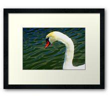 Side glance Framed Print