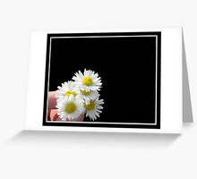 Daisies for YOU! Greeting Card