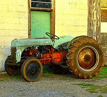 Ford Tractor by Rodney Williams