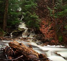 Rushing Waters at Ricketts Glen by Mark Van Scyoc