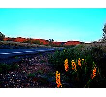 Breath Taking Road Side view- Mt. Isa, Queensland Photographic Print