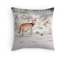 """Watchful Eyes"" - Australian Dingo Throw Pillow"