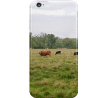 Cattle Ranch iPhone Case/Skin