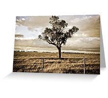 Peace & Quiet Greeting Card