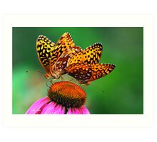 Colorful Butterfly Twins Art Print