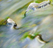 Turon River #1 by Geraldine Lefoe
