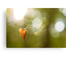 Hanging Canvas Print