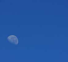 Moon by Day by Patrick Keevil