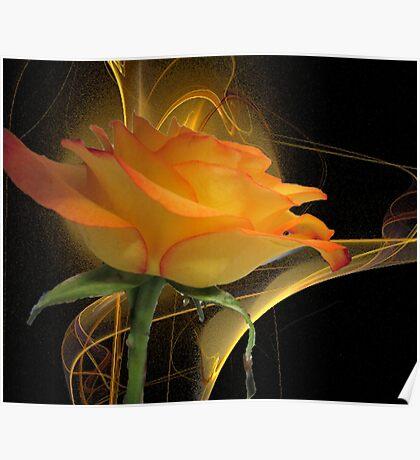 The Apophysis Rose Poster