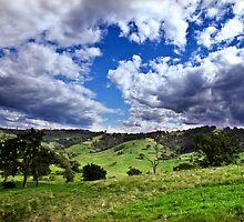 The Bega Valley by Tamara Dandy