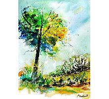watercolor 114062 Photographic Print