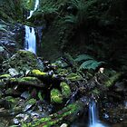 Quaille Falls by Claire Walsh