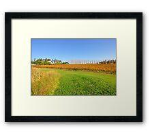 Tarrawarra Vineyard, Victoria Australia Framed Print
