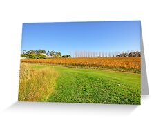 Tarrawarra Vineyard, Victoria Australia Greeting Card