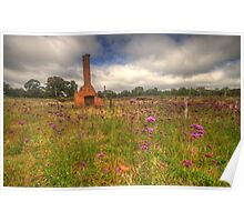 Wildflowers - Hill End, NSW Australia - The HDR Experience Poster