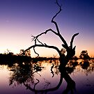 Venus and the Moon at Menindee by Carol Ritchie