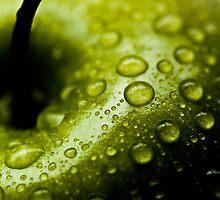 Wet Apple by Joshua  Bennett