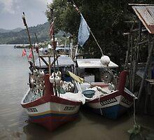 Fishing Village by Colin  Ewington