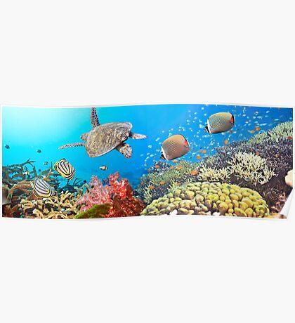 Underwater panorama Poster