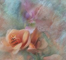 Peach Freesia by Carolyn Staut