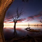 Barmera South Australia by Dene Wessling