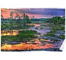 Florida Everglades Sunset Poster