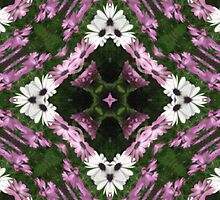 Purple and White Daisies Kaleidoscope 10 by Christopher Johnson