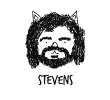Stevens Photographic Print