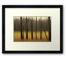 Into A Meadow Framed Print