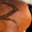 Z is for Zico by Ritva Ikonen