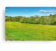 The Field In Spring Canvas Print
