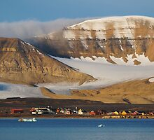 Ny Ålesund by Algot Kristoffer Peterson
