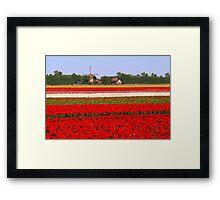 Tulips + mill = Holland! Framed Print