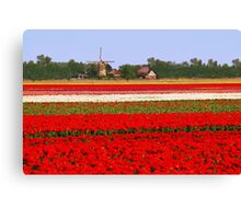 Tulips + mill = Holland! Canvas Print
