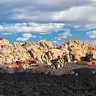 Red Rock Canyon Panorama by Eddie Yerkish