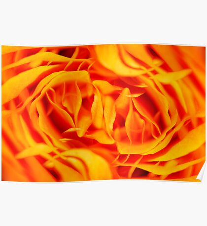 Floral Fire Poster